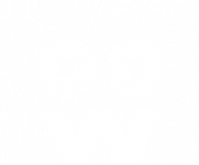 Dr. Perry Woo Logo